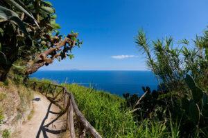 Escursioni a Campagnano d'Ischia