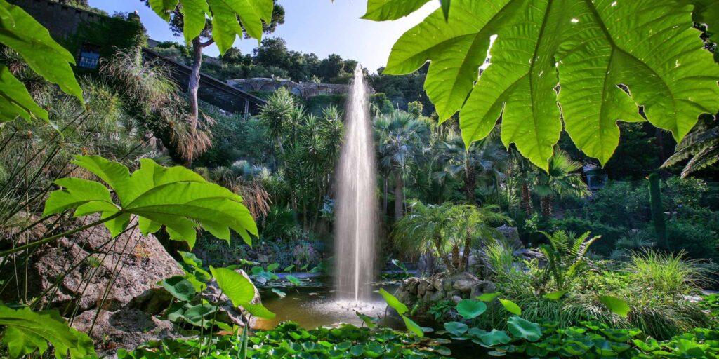 Forio d'Ischia: Giardini La Mortella