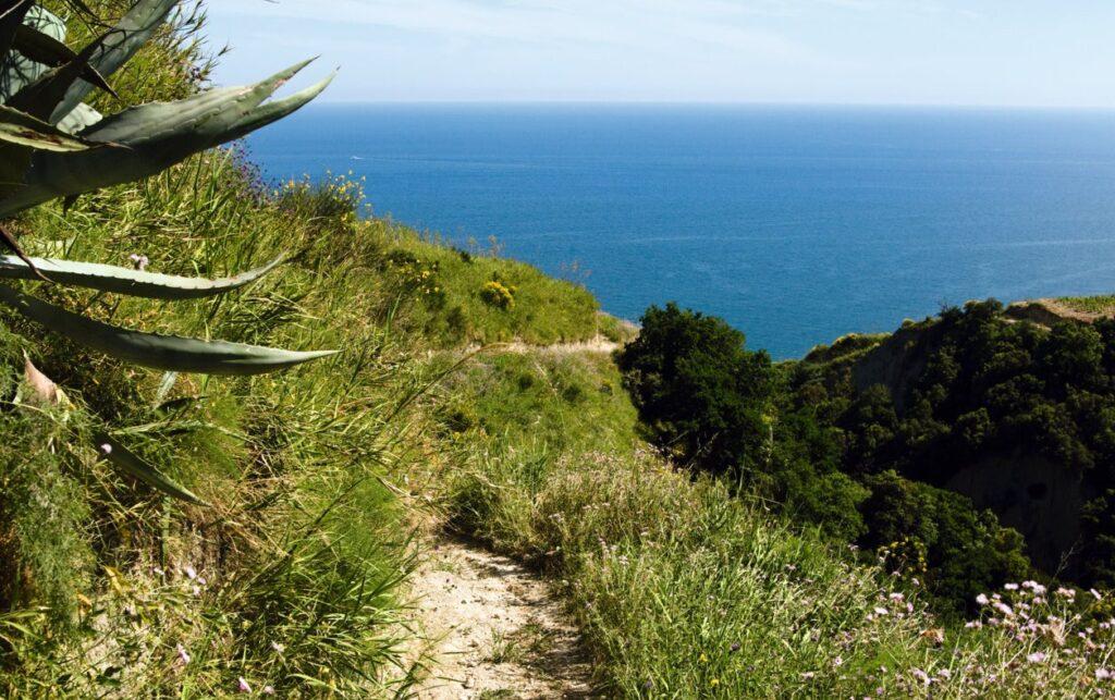 Sentiero del Santuario a Ischia